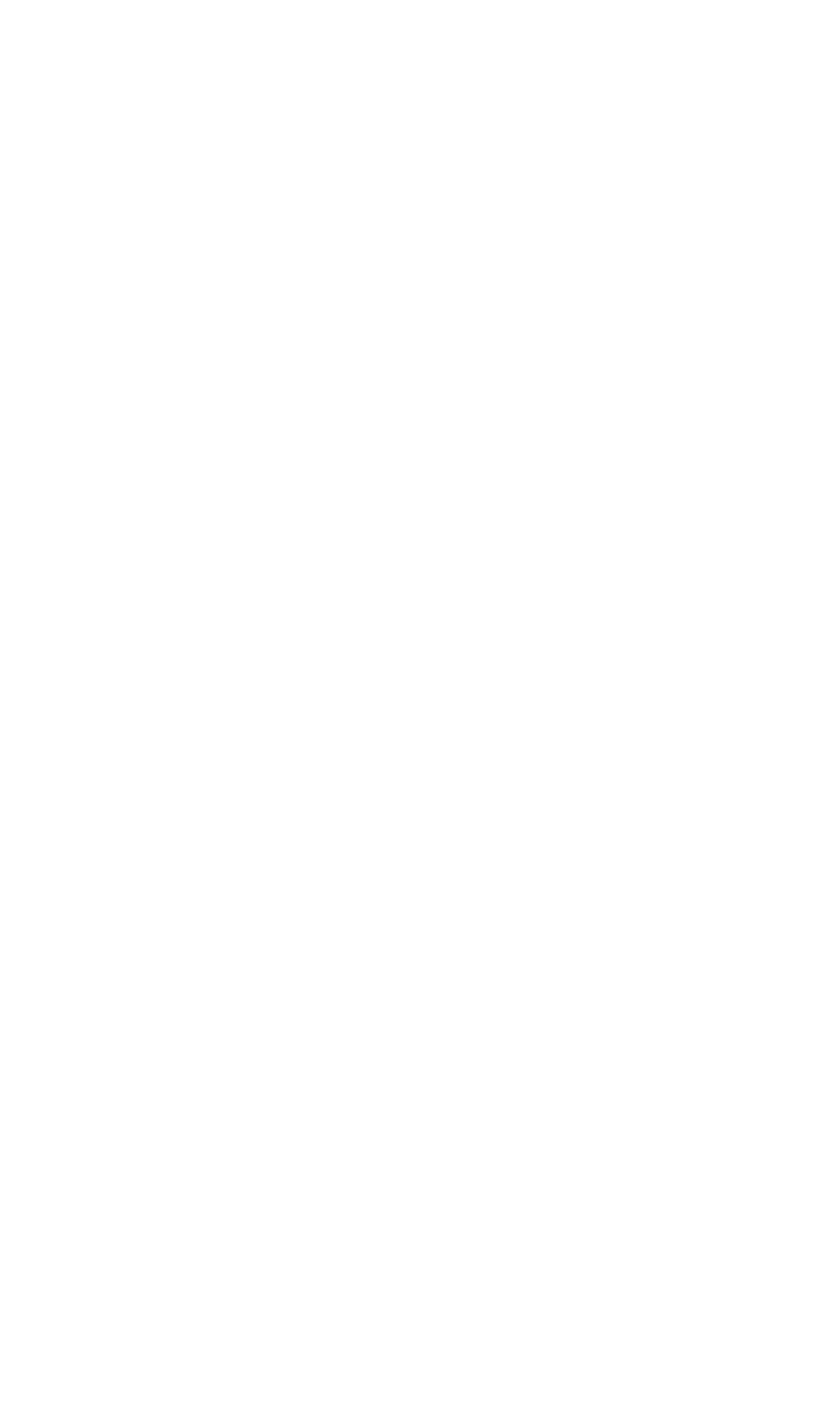 Iron Wolf Studio - logo